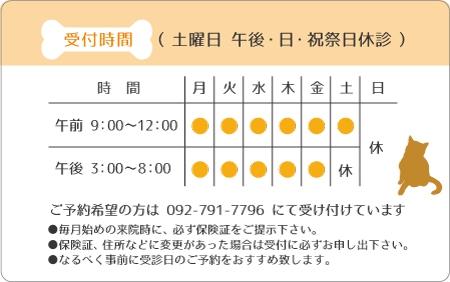 診察券デザイン 動物01-オレンジ裏