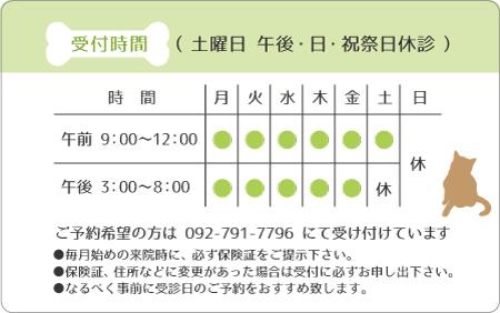 診察券デザイン 動物01-黄緑裏